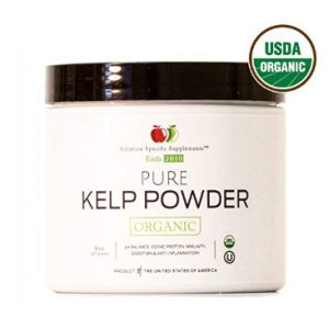kelp powder for digestion