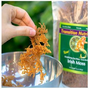 fresh whole leaf irish moss
